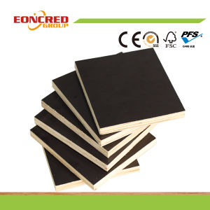 Black Brown Film Faced Plywood, Construction Plywood, Shuttering Plywood