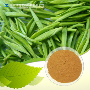 GMP Factory Supply Black Tea Extract Theaflavins 10%, 40%, 50%, 60% pictures & photos