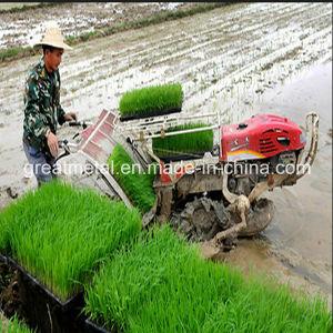 Agricultural Belt Rice Transplanter (2ZT-6300B) pictures & photos