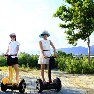 New Specialized Electric Vehicles with Self Balancing CE Certification pictures & photos