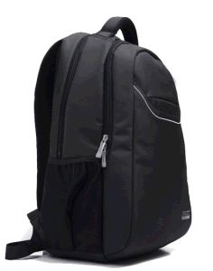 Backpack for 15 Inch Laptop with High Quality (SB2126) pictures & photos