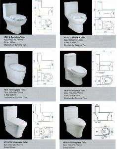Ceramic Toilet, One-Piece Ceramic Toilet
