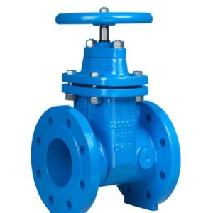 Casting Iron Industry/Marine Gate Valve pictures & photos