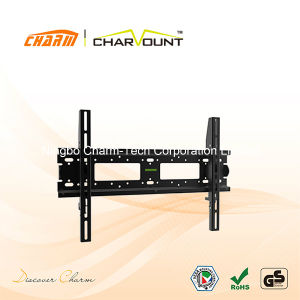 Flat Panel TV Mount (CT-PLB-711S) pictures & photos
