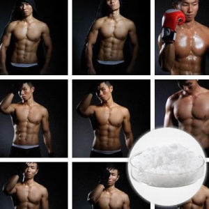 Top Quality Injectable Anabolic Steroid Liquid Nandrolone Decanoate pictures & photos