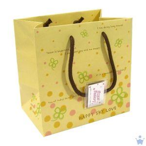 Shopping Paper Bag for Packing and Shipment pictures & photos