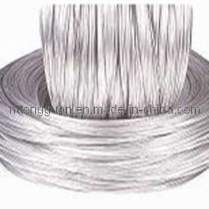 Tongguan Brand Galvanized Steel Wire pictures & photos