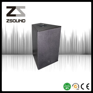 Zsound Cla Passive Club DJ Live Acoustic 2 Way Loudspeaker pictures & photos