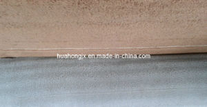 Down Dobby High Speed Terry Towel Loom pictures & photos