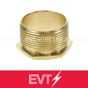 Short Brass Male Bush, Brass Reducing Bushing pictures & photos