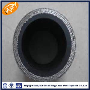 En856 4sp Stainless Steel Flexible Metal Hose Pipe pictures & photos