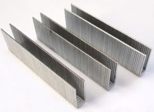 High Quality Pneumatic Industrial Staples with Good Use pictures & photos