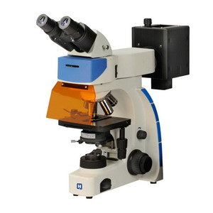LED Illumination Binocular Fluorescence Microscope (LF-202) pictures & photos