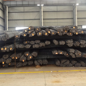 High Strength Hot Rolled Defromed Bar pictures & photos