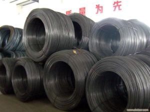 Prime Mill Price SAE1006 SAE1008 Carbon Steel Wire Rod in Coil pictures & photos