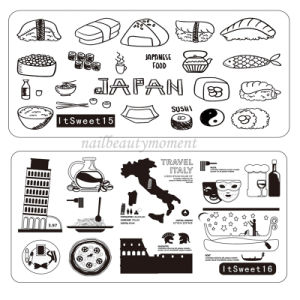 Manicure Beauty Nail Stainless Steel Image Stamping Plates (SNA21)
