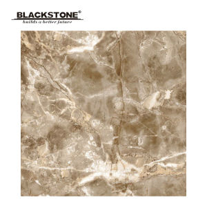 600X600 New Design Porcelain Rusric Floor Tiles (660501NA3) pictures & photos