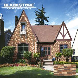 300X600mm Rustic Porcelain Wall Tile (36081) pictures & photos