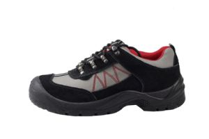 Trainer Safety Shoes with CE Certificate (SN1510) pictures & photos