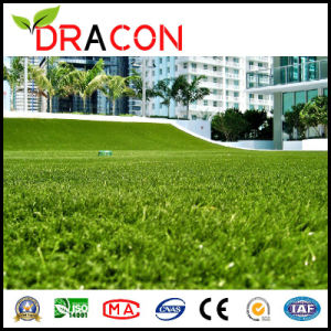 Artificial Synthetic Grass Indoor Grass Carpet (L-1204) pictures & photos
