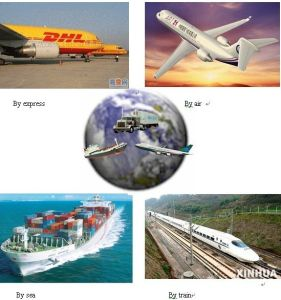 Freight Forwarder From Qingdao to Melbourne, Australia pictures & photos