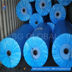 Coated Waterproof Tarp Fabric PE Tarpaulin pictures & photos