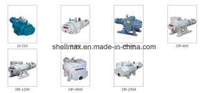 Top Brand Roots Vacuum Pump pictures & photos