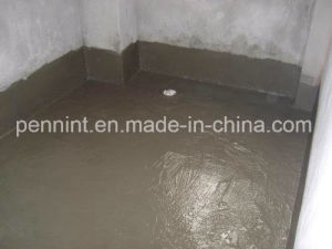 Grey Polymer Cement Waterproof Coating Js Putty pictures & photos