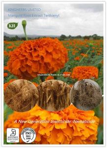 Marigold Root Extract Alpha-Terthienyl / Nematicide pictures & photos
