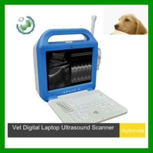 Laptop Veterianry Ultrasound Scanner