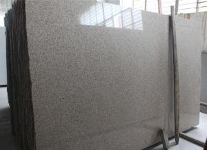 G682 Granite Slab, Natural Granite, Granite Slab for Wall Tile, Floor Tile, Countertiops