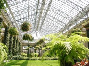 Eco-Friendly Galss Greenhouses for Sale