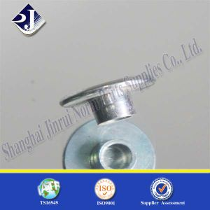 Swivel Nut (4.8 Carbon Steel) pictures & photos