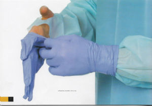 Dental Usage High Quality Blue Color Powder Free Disposable Gloves pictures & photos