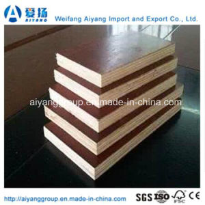High Quality Film Faced Plywood in All Sizes pictures & photos