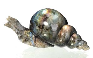 Natural Labradorite Carved Snail Sculpture Home Decoration #Aj11