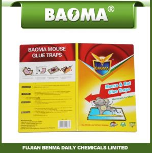 Baoma Rat Glue Trap Paper Board pictures & photos
