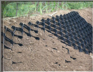 Geocell for Grass Seed Mats Cell Depth HDPE Smooth pictures & photos