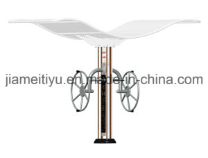 Fashion High Grade Park & Community Outdoor Fitness Equipment Arm Wheel pictures & photos