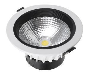 30W COB LED Downlight (YC-TDCOB-30)