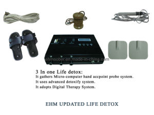 Ion Detox Foot SPA pictures & photos