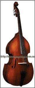 Bass (MB050E)