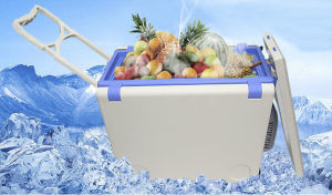 20L Portable Picnic Cooler, Travelling Cooler, with Handle and Wheels