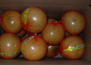 New Crop Fresh Honey Pomelo EU Quality pictures & photos