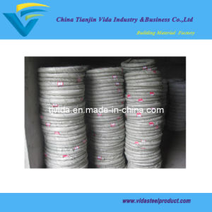 Galvanized Wire 25kgs Per Coil with Hussian Packing (2.0MM) pictures & photos