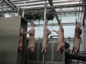 Pig Carcass Scalding Processing Line (HT-PI-03)