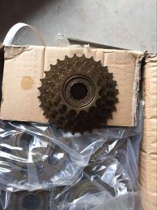 Free Wheel pictures & photos