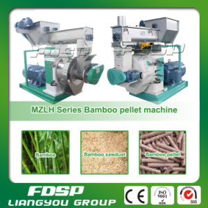 CE/ISO/SGS Bamboo Sawdust Pellet Machine pictures & photos