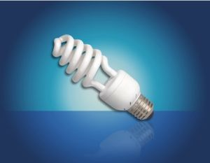 Compact Bulb - Spiral Series (15)