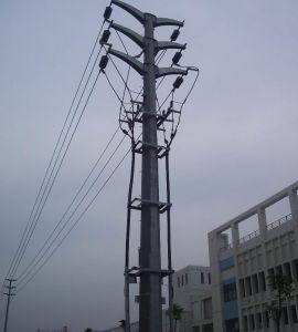 Steel Monopole Tower (NTSMT-003)